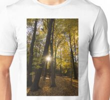 Sun Spotting Autumn - a Peaceful Forest in the Fall Unisex T-Shirt