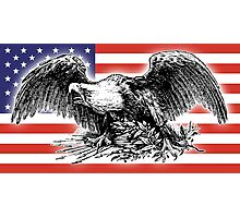 USA, Flag, War Eagle, America, American Photographic Print