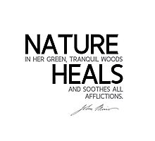 nature heals - john muir Photographic Print
