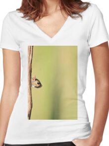 Squirrel Antics - Wildlife Background - Funniest Nature Women's Fitted V-Neck T-Shirt
