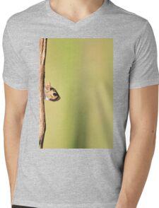 Squirrel Antics - Wildlife Background - Funniest Nature Mens V-Neck T-Shirt
