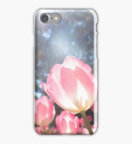 Pink Tulips of Araluen  iPhone Case/Skin