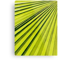 Green Palm Frond Metal Print