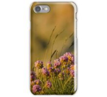 Summer breeze iPhone Case/Skin