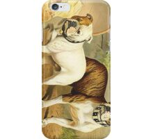 Vintage Painting of English Bulldogs iPhone Case/Skin