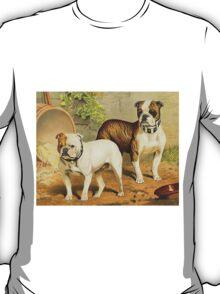 Vintage Painting of English Bulldogs T-Shirt
