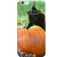Halloween Kitten iPhone Case/Skin