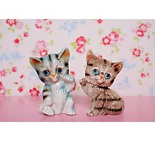Hello Kitties Photographic Print