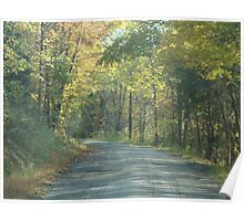 Country Road Autumn Poster