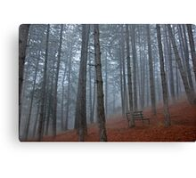 Lonely bench - Florina Canvas Print