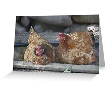hen in the farm Greeting Card
