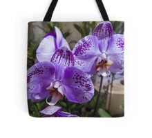 orchid in the garden Tote Bag