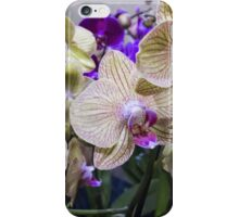 orchid in the garden iPhone Case/Skin