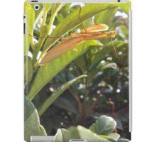 Brown Praying Mantis Sitting in the Foliage Vertical iPad Case/Skin