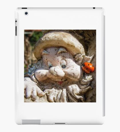 Who's Looking at You? iPad Case/Skin