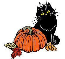 Black cat and Halloween pumpkin  Photographic Print