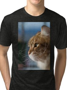 Cat whiskers in the sun Tri-blend T-Shirt
