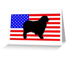 AS silhouette on flag Greeting Card