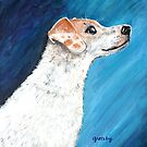 Jack Russell Terrier 2 by gretzky