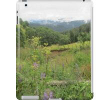 austrian beauty iPad Case/Skin