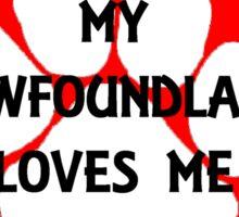 my newfoundland loves me Sticker