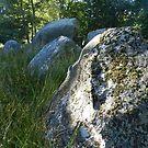 Neolithic Site on Falster by hans p olsen