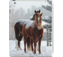 Horses in the Snow iPad Case/Skin