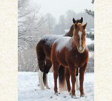 Horses in the Snow Hoodie