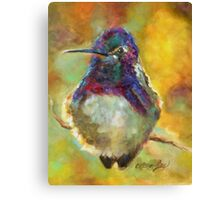 Perfectly Plump by Chris Brandley Canvas Print