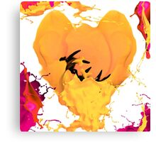 creations canvas Canvas Print