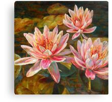 Pink Extravaganza by Chris Brandley Canvas Print