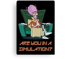 Rick and Morty – Are You in a Simulation? Canvas Print