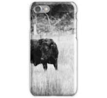 Cows black and white iPhone Case/Skin
