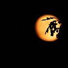 golden moon by ANNABEL   S. ALENTON
