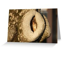 olive trunk Greeting Card