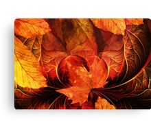 Apoptosis: The Fractal Geometry of Falling Leaves Canvas Print