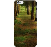 Sunrise Allée iPhone Case/Skin