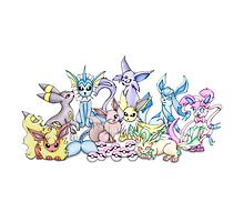 Eeveelutions Illustration by Shona Owen