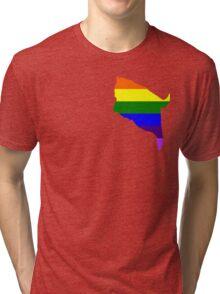 fat cat logo rainbow pride Tri-blend T-Shirt