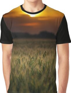Wheat field at sunset, sun in the frame Graphic T-Shirt