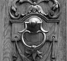 Details of a Door by Barbara  Brown