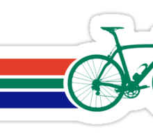 Bike Stripes South Africa Sticker