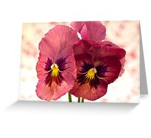 Pretty Pansies Greeting Card