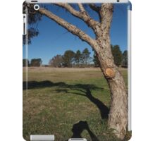 Canberra afternoon iPad Case/Skin
