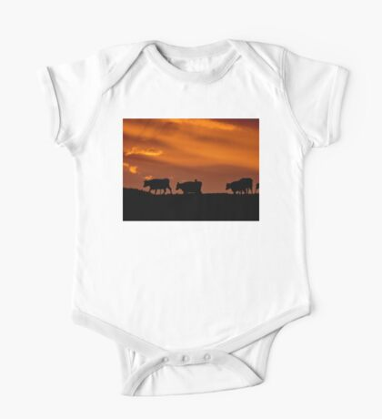 Sunrise Cows - New Zealand One Piece - Short Sleeve