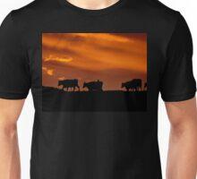 Sunrise Cows - New Zealand Unisex T-Shirt