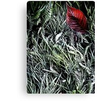 First frost. Canvas Print
