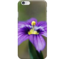 Blue-Eyed Grass Squared iPhone Case/Skin