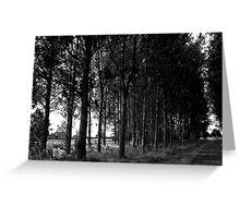 Black and White Tree Landscape Scene Greeting Card
