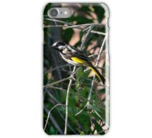 White Cheeked Honey Eater iPhone Case/Skin